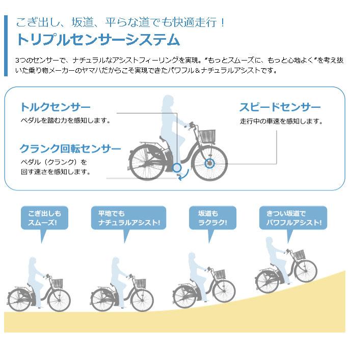 ... 子供乗せ電動アシスト自転車