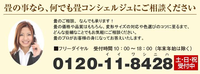 �ե�������0120-11-8428 10��00��18��00(ǯ��ǯ�Ϥ��)