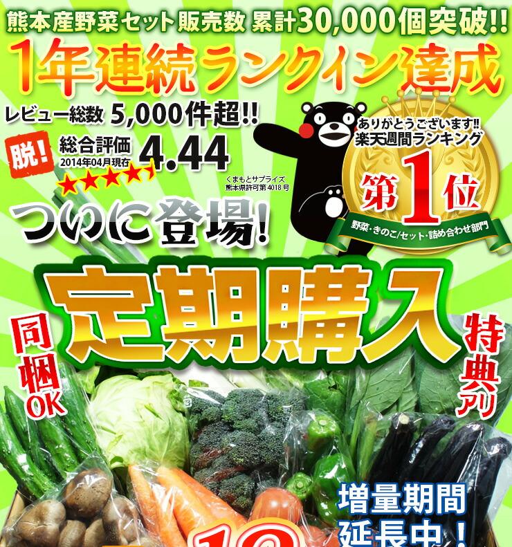 熊本産野菜セット定期購入