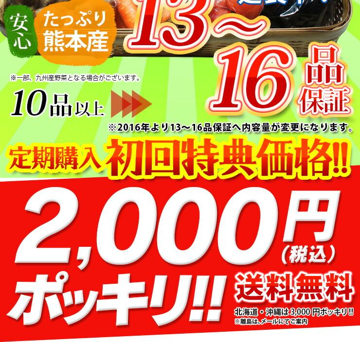 初回特典価格2,000円ポッキリ!