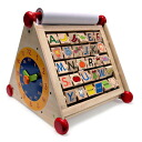 7in1 activity center