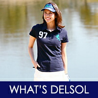 What's DELSOL