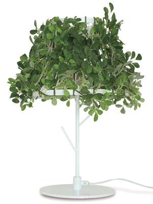 デザイン照明のdi classe foresti ディクラッセ フォレスティ テーブルランプ ホワイト