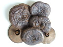 Black grass reishi mushrooms drying naturally (original soul grass) 500 g fs3gm
