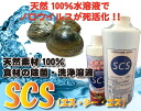 SCS (vegetable detergents) fs3gm02P28oct13