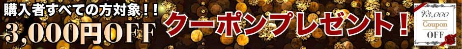 3000円OFFクーポンプレゼント