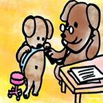 犬の健康チェック