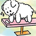 犬の肥満度チェック
