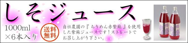【送料無料】しそジュース 6本入(送料無料)
