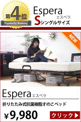 折り畳み式抗菌樹脂すのこベッド Espera