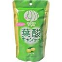 "Folic acid candy lemon flavor 94 g? s international shipping Welcome Declaration""IBI E089966upup7 10P05Apr14M"