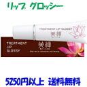 """More than 5250 Yen' Zen beauty treatments lip glossy 10 g (vixen) upup7"