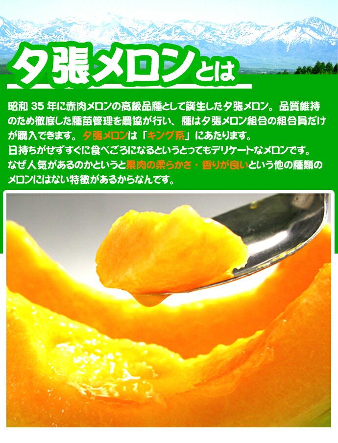 wkyum_006.jpg