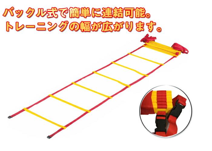 トレーニングラダー