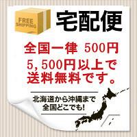 1/5��1/31�ޤ� ������Χ 500��