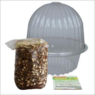 シイタケ栽培キット容器付き付属品
