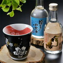 Name gifts put the Arita pottery cups Red Fuji shochu Cup & shochu set