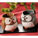 OWL with handle mug Cup past