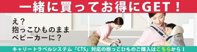 cts_rink_01.jpg