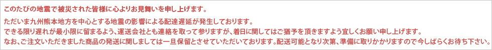 熊本地方地震