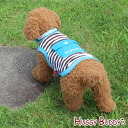 Put mini-Cairo; and ☆ dog wear (XS - XL) HUGGY BUDDY'S( ハギーバディーズ) 《》 with one horizontal stripes tank top (blue) cold insulation agent with the warm ♪ pocket