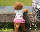 Check ribbon frill one piece / red (XS-XL size) one co-clothes dog clothes dogware 《 05P21Aug14 》