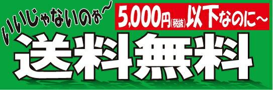送料無料5000円以下