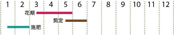 開花カレンダー(赤葉紅花常盤満作)
