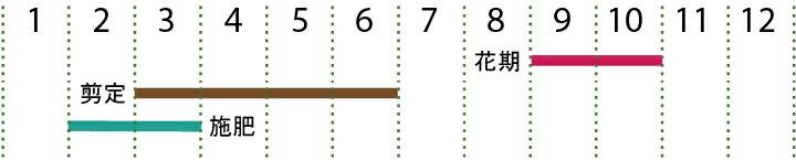 開花カレンダー(ギンモクセイ)