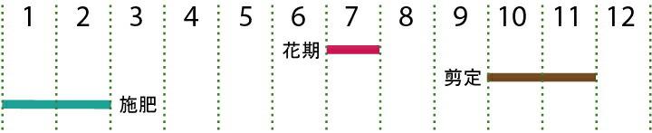 開花カレンダー(アデク)