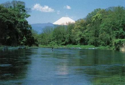 柿田川湧水 富士山百年水