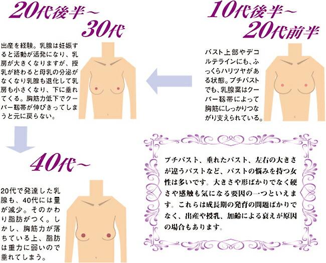 プチバスト、垂れたバスト、左右の大きさが違うバストなど、バストの悩みを持つ女性は多いです。大きさや形ばかりでなく硬さや感触も気になる要因の一つといえます。これらは成長期の発育の問題ばかりでなく、出産や授乳、加齢による衰えが原因の場合もあります。