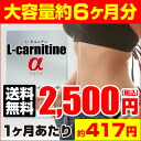 L-carnitine α (l-carnitine α) ( economical diet supplement supplements l-carnitine L carnitine dietary supplement diet supplements beauty supplements Health Supplement Rakuten cheap store rankings popular selling kkb )