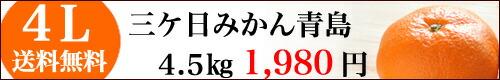 三ケ日みかん青島4Lサイズ