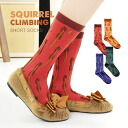 The crew sock that a three-dimensional squirrel pattern is unique! Grow it; and 履 いてもくしゅくしゅさせてもかわいい middle length socks socks Lady's length womens miscellaneous goods accessory footwear crew sock ◆ flag squirrel regular socks