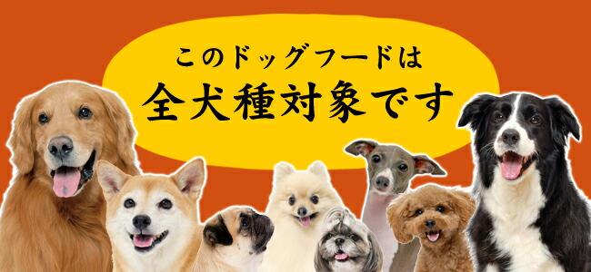 全犬種対応
