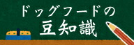豆知識コラム