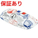 Glasses case Paris 90F4