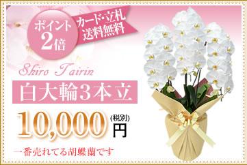 白大輪10000円