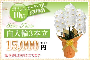 白大輪5000円