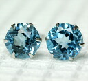 Platinum 900 blue topaz 5.0mm pierced earrings