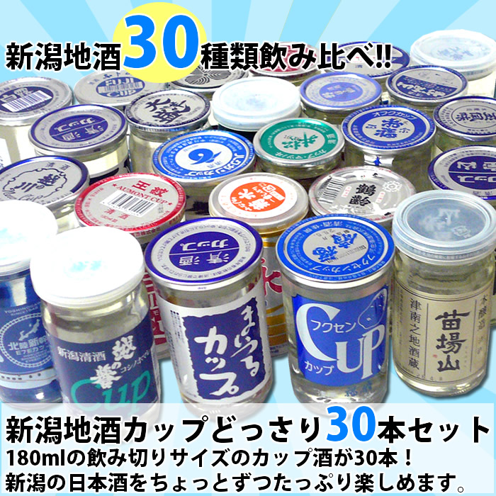 カップ酒30本夏セット