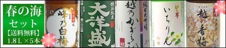 日本酒 飲み比べセット 春の海 純米大吟醸