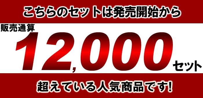 日本酒 12000セットの大人気商品
