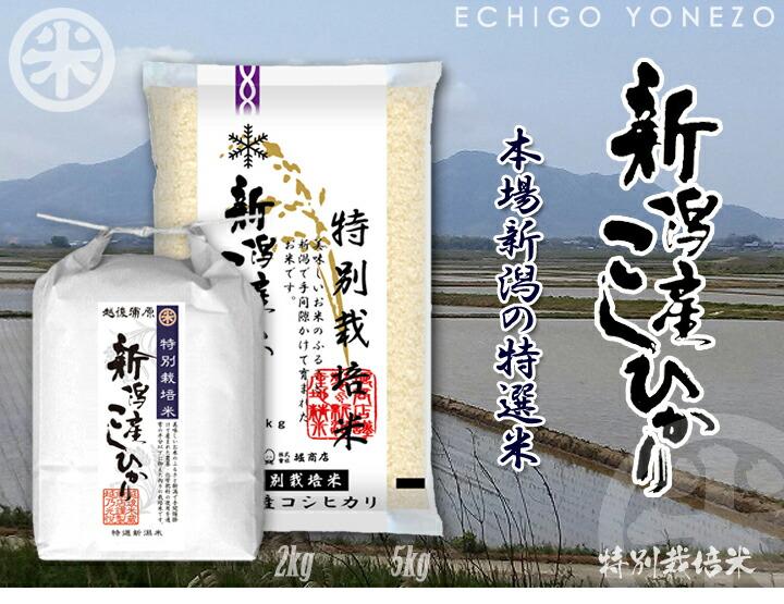 特別栽培米 新潟産コシヒカリ1