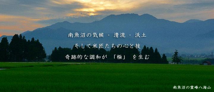 [極上] 魚沼産コシヒカリ 白米