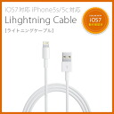Iphone5s-lightning_i