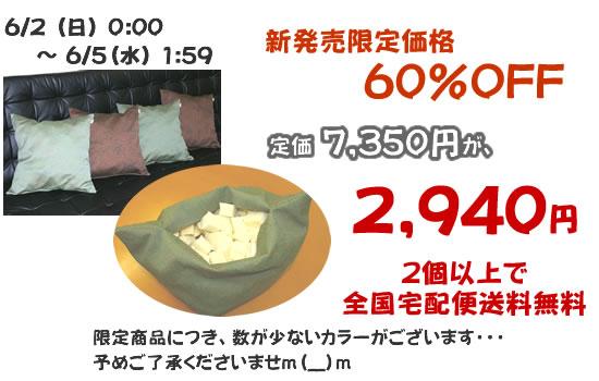 期間限定特別価格【60%OFF】
