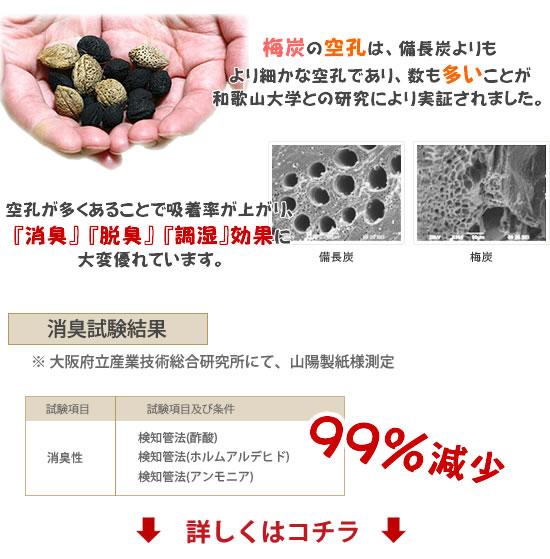 梅炭和紙の消臭効果