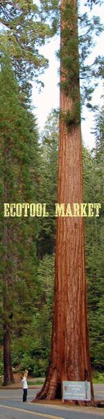 ecotool market
